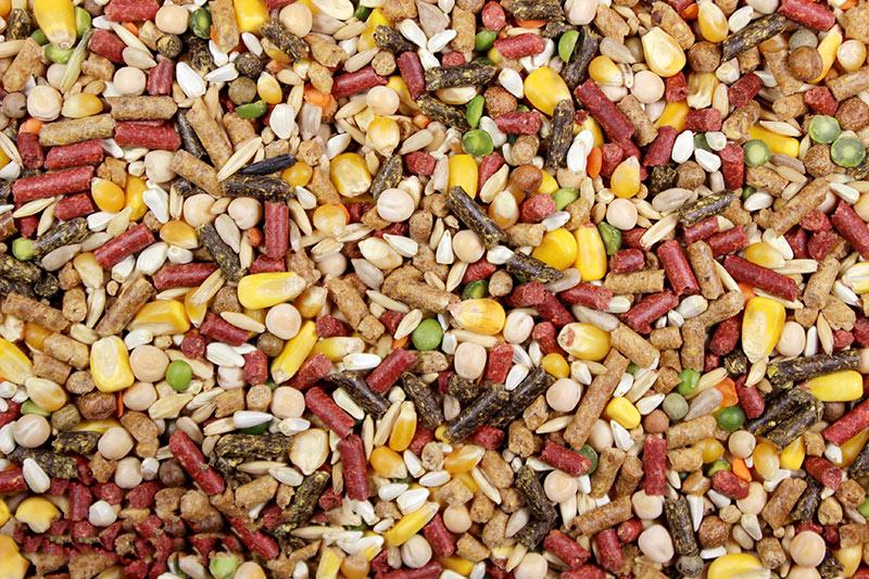 High Octane – Leach Grain & MIlling